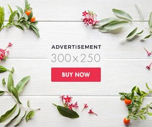 brilliance-bad300x250-post